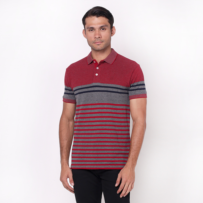 Red Colour Blocked Stripe Polo With Embroidered Details